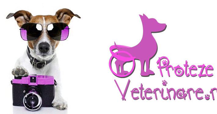 proteze veterinare